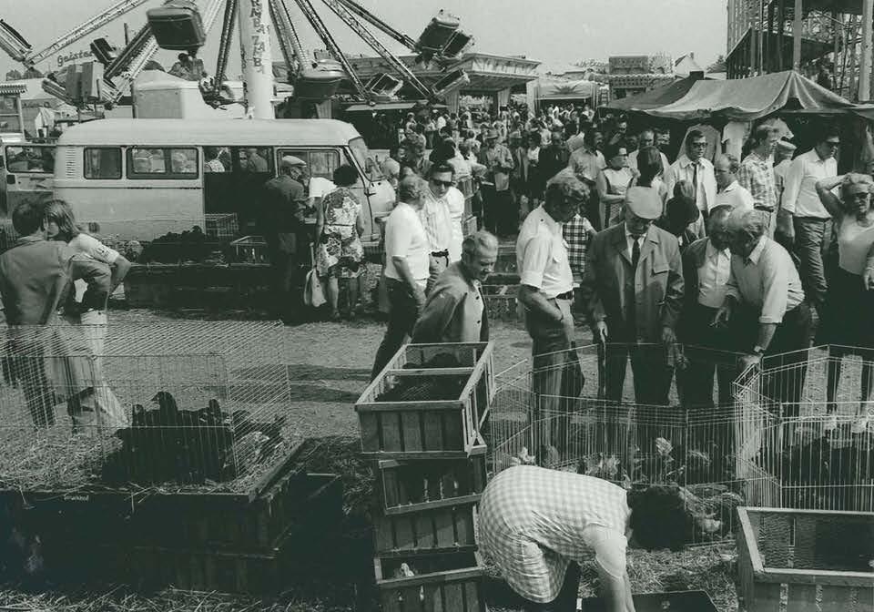 Blasheimer Markt, Dr Allemeyer, um 1980 II